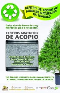 Realizarán campaña de Acopio de Arboles Naturales de Navidad