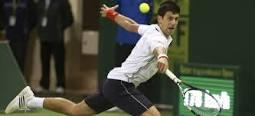 Cae el tenista Djokovic contra Ivo Karlovic