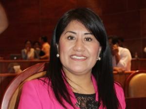 Poner orden en los estacionamientos públicos de la capital, pide Palma López